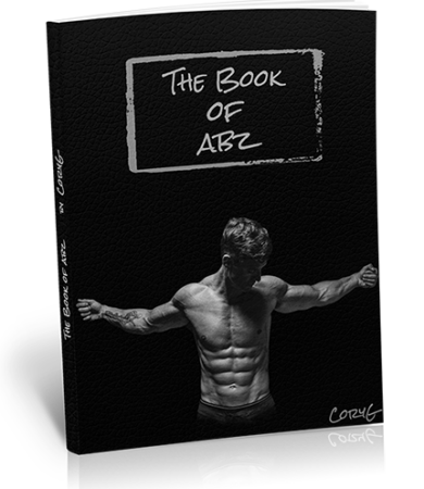 bookofabz-cover-transparent-web2